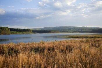 Doorndraai Dam Nature Reserve, Limpopo